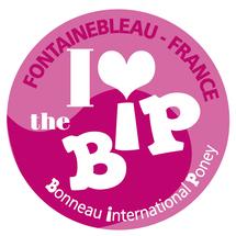 Concours de saut d'obstacles international poney 2011 France - Fontainelbeau