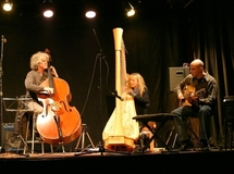 Harp's Wings Trio