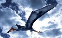 Quetzalcoaltus