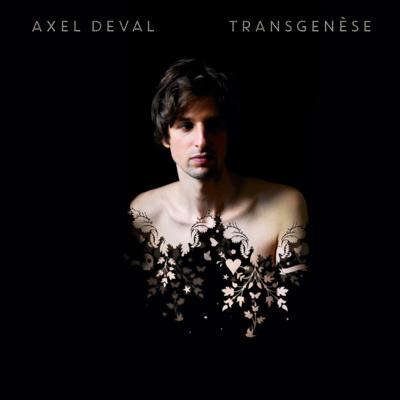 Le deuxième album d'Axel Deval