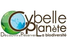 Cet été, voyagez pour la nature avec Cybelle Planète !