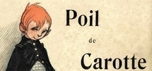 POIL DE CAROTTE - Gilles Ramade