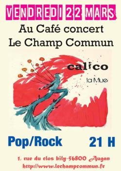 Concert Calico - Pop Rock