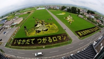 TAMBO ART FROM JAPAN TO CAMARGUE - Festival grands chemins d'envies rhonements