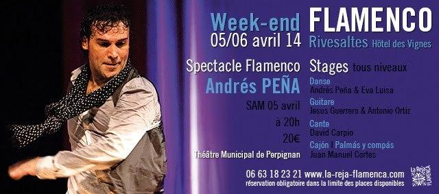 FLAMENCO l Spectacle + stages l ANDRÉS PEÑA & LORENZO RUIZ l 05/06 avril