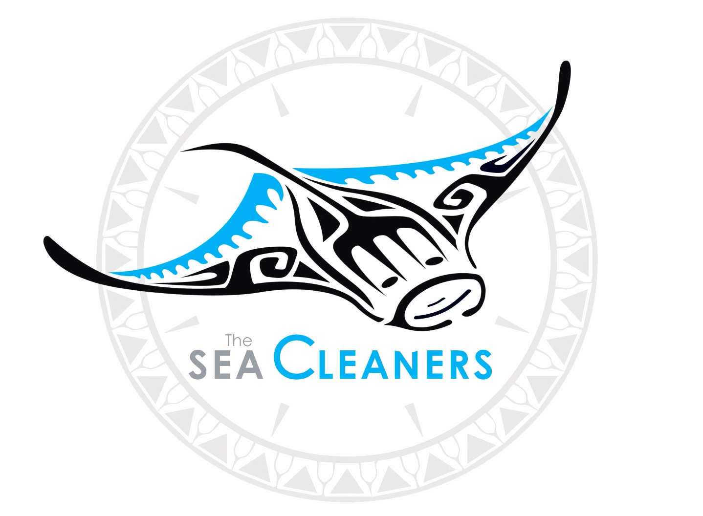 https://www.theseacleaners.org/