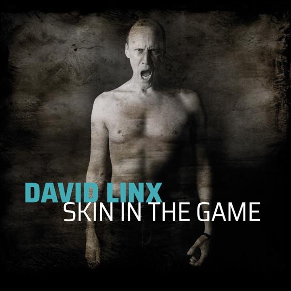 David Linx brille avec l'album Skin in the Game