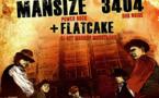 B.r.E.f (comics core) + 3404 (dub noise)  + Mansize (power rock) + Flatcake (dj set)