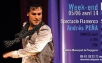 FLAMENCO l Spectacle + stages l ANDRÉS PEÑA & LORENZO RUIZ l 05/06 avril