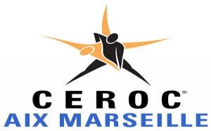 Stage de Ceroc Modern Jive pour debutants - Plan de Campagne 13480
