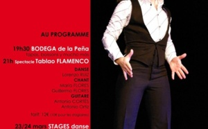 Spectacle + stages FLAMENCO - LORENZO RUIZ -
