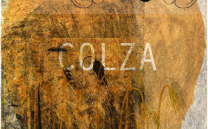 """Lecture-spectacle """"Colza"""""""