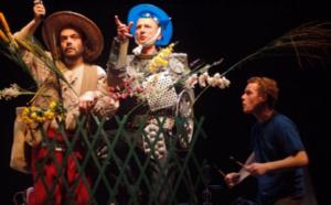 Groupe Anamorphose / Don Quichotte