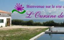 L'Oursine de Ré / Aquaculture / Oursins