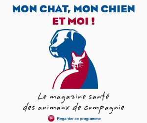http://www.vermifugeonsensemble.fr/